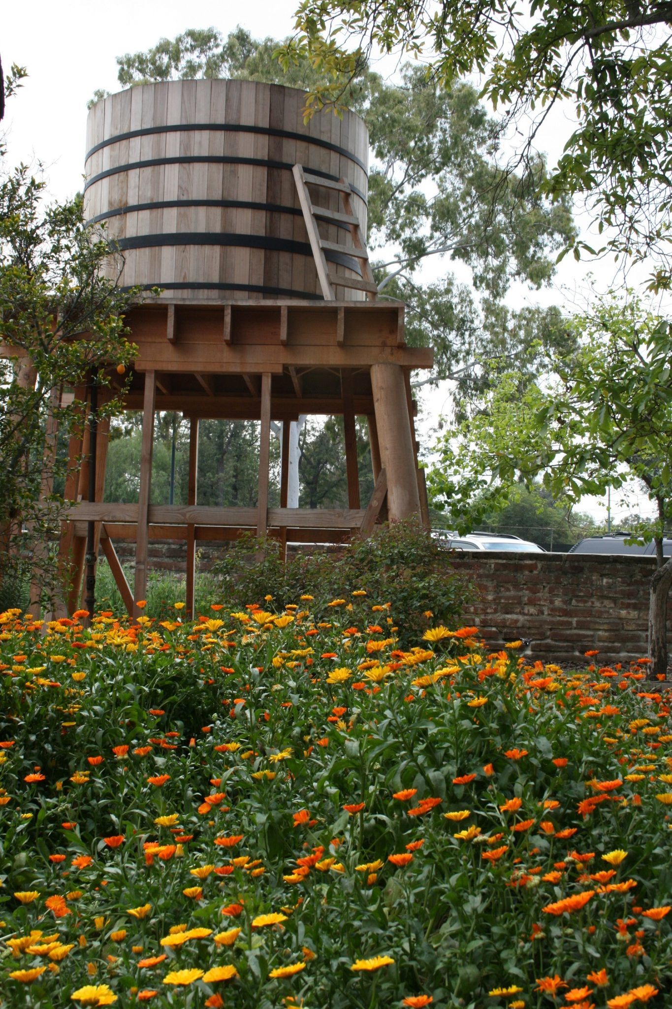 Water Tower with Calendulas