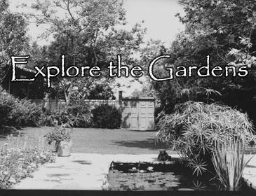 Explore the Gardens