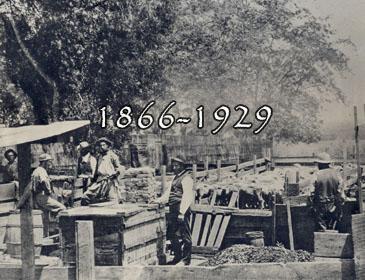 1866-1929
