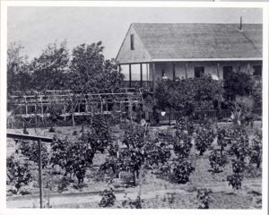 Bixby Garden in 1860s