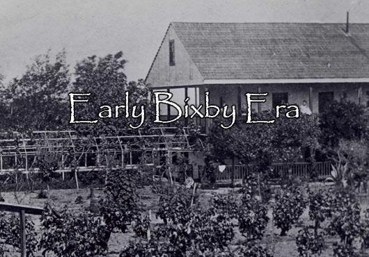Early Bixby Era