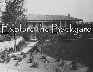 Explore the Backyard