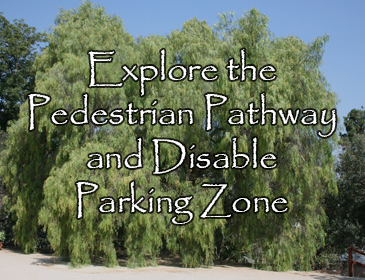 Explore the Pedestrian Pathway and Disable Parking Zone