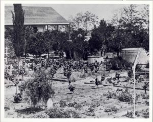 Bixby Garden, circa 1860s