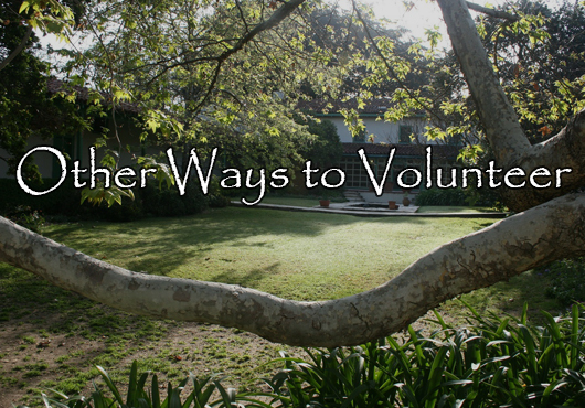 Other Ways to Volunteer