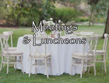 Meetings and Luncheons