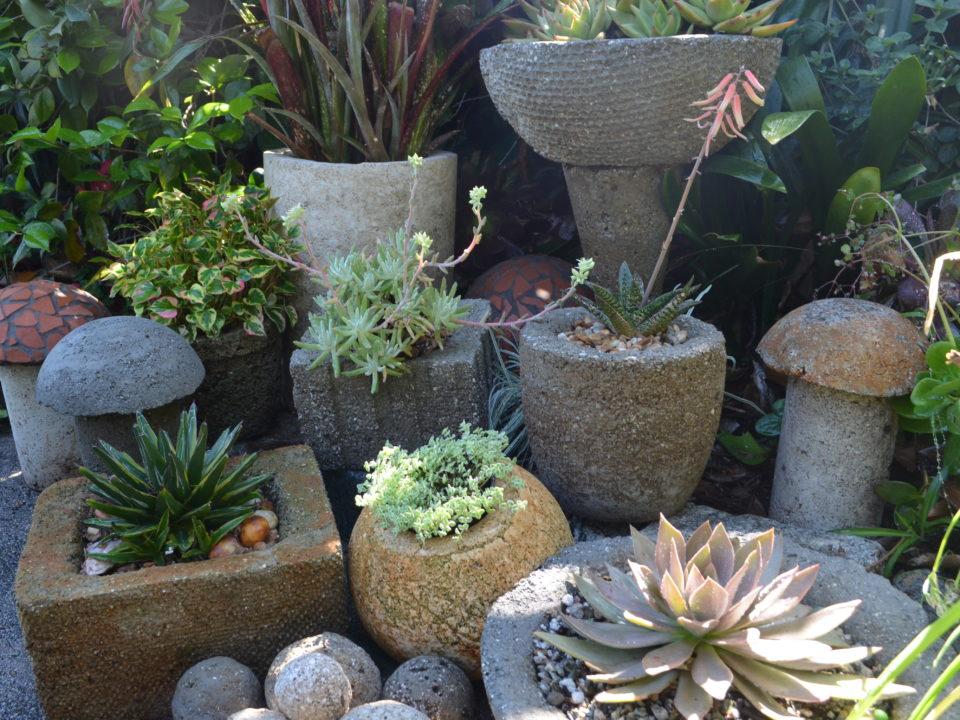 hypertufa pots planted with succulents