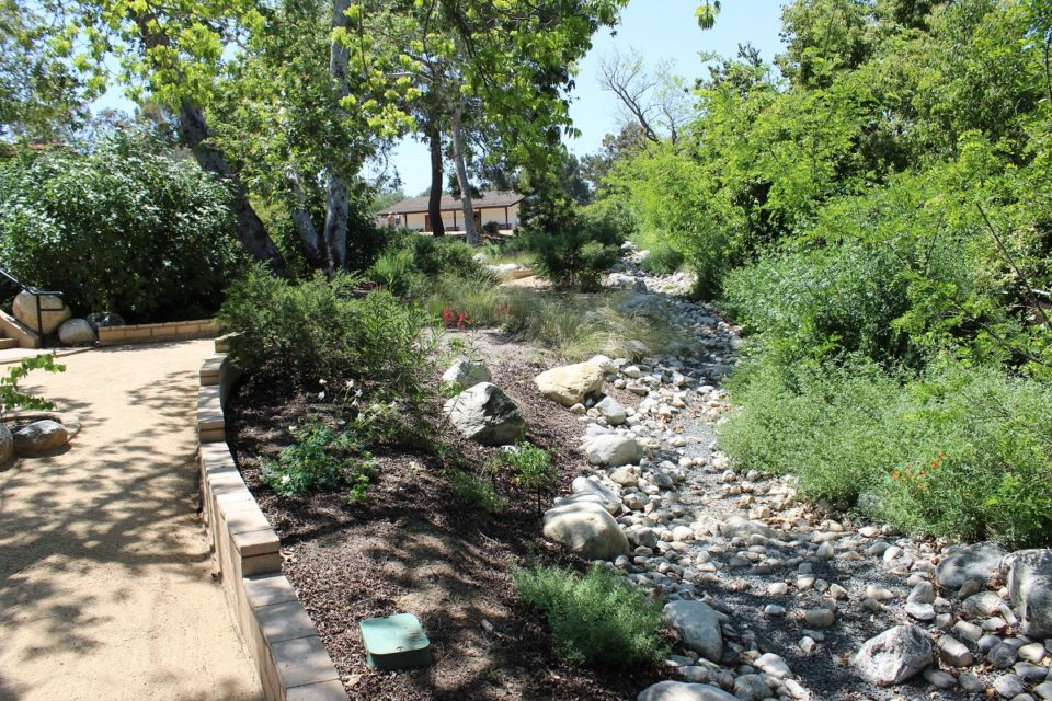 Dry creek native garden with view of Visitor Center
