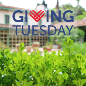 Giving Tuesday logo over a photo of the courtyard